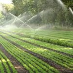 Irrigation Experts County Dublin